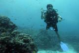 Dive 11 - Breakfast Bend