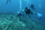 Dive 12-13 - Koh Bon