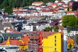 Bergen hillside