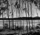 Land, cityscapes and seascapes in black and white