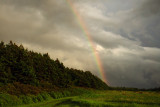 Rainbow, Hermanville PEI