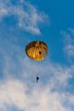 Paratrooper_8100528.jpg