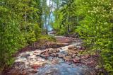 76.31 - Last Creek: Looking Towards Lake Superior
