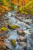 * 84.83 -  Tait River: Autumn, Vertical