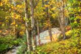* 76.42 -  Last Creek Cascade Golden Autumn With Birches (Dreamy)  LIC_1176.jpg