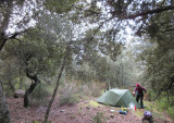 Feb 17 Mallorca GR221 - Camp above Lluc monastery