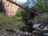 Boulder Mail Trail - Death Hollow
