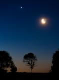 Moon & Venus