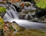 Rivers of Oregon 2016