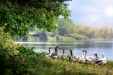 Wild Geese_PB_1000.jpg