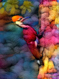 Yarn Pecker