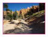 17 10 P1040450 Helen at Bryce Canyon