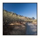 16 11 13 099 Near Madera Canyon in Santa Rita Mountains