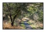16 11 13 102 Madera Canyon