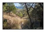 16 11 13 104 Madera Canyon
