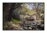 16 11 13 115 Madera Canyon