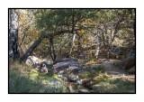 16 11 13 140 Madera Canyon