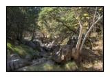 16 11 13 154 Madera Canyon