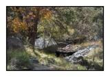 16 11 13 172 Madera Canyon