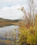 St Clair Lake