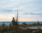 Cloudy Dawn at Big Stone Bay