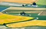 Skagit Valley Farmland Washington 016