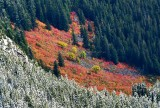Fall in Cascade Mountains Washington 933