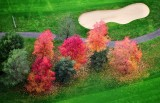 Fall Foliage on golf course 385