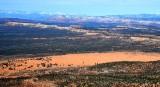Coral Pink Sand Dunes State Reserve Moquith Mountains Block Mesa Elephant Bute Knab Utah 416