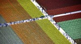 Tulip Fields at Roozegaarde Mount Vernon Washington 184