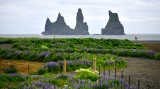 Reynisdrangar and Blasandi,  Basalt Sea Stacks, Vik, Iceland 1406