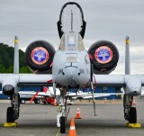 A-10C Thunderbolt II Demonstration Team, Seattle Seafair 2018 at Boeing Field, Washington 120