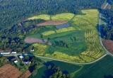 North Carolina - Old North State; Tar Heel State