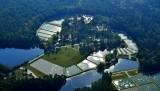 South Carolina - The Palmetto State