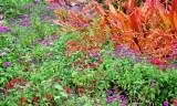 Flowers at Grand Wailea Maui 171
