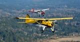 Beaver and Bird Dog over Redmond, Washington 337