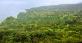 Lust landscape on Hana Highway, Maui, Hawaii 160a