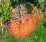 Autumn Colors over Washington State 2018