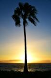 Sunset on Maui, Hawaii 218