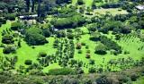 Large farm off Kalanikahua Road in Haiku, Maui, Hawaii 778