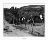 20/09/2017 · Tanca - Rossell (Baix Maestrat)