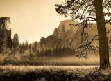Sunrise - meadow #2769rr-sepia