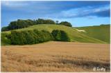 White Horse Cherhill