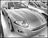 BMM Jaguar Collection Centre