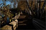 Fraser Valley, BC