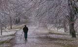Ice Storm 01