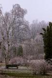 Ice Storm 02