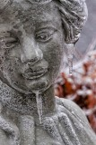Ice Storm 09