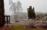Ice Storm 29