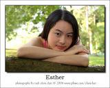 Esther 10